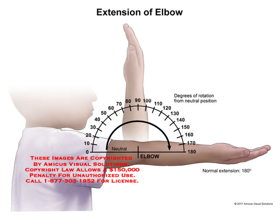 elbow extension diagram