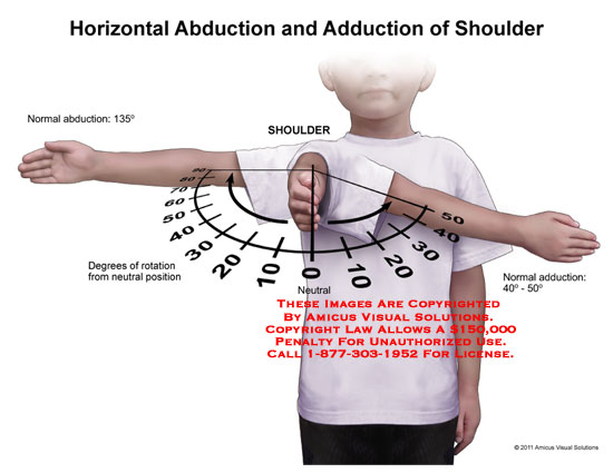 1111208d Horizontal Abduction And Adduction Of Shoulder Anatomy